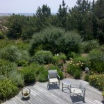 backyard patio landscape with plants oasis