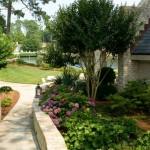 beautiful plants backyard hampton roads landscape design