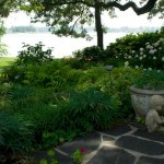 backyard oasis relaxation plants and stone patio